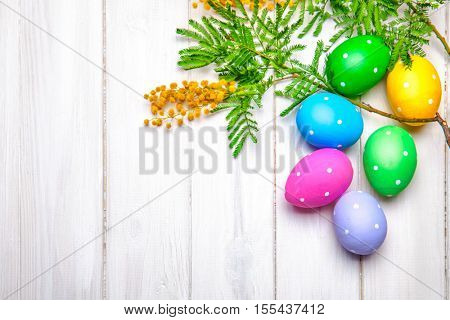 Easter eggs top view branch mimosa spring flowers on white wooden board for holiday card with copyspace