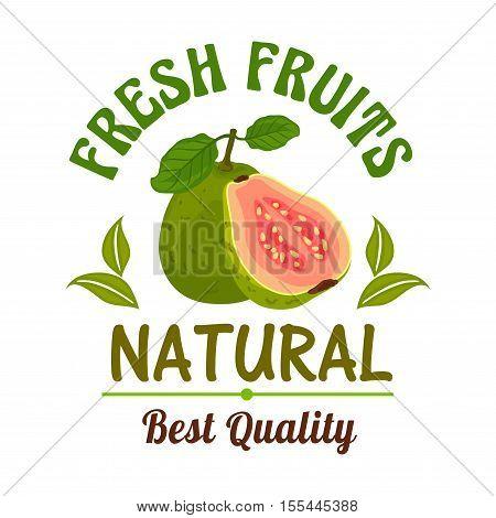 Guava. Fresh natural fruit emblem. Best quality guava fruit sticker for juice, dessert label, sticker. Whole and half slice cut juicy guava icon for cafe, vegan drink poster