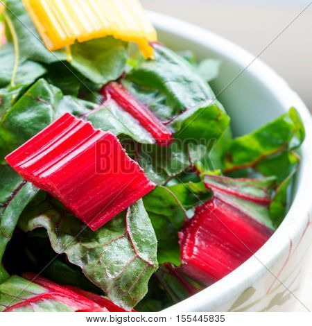 red and yellow leafy chard in a bowl shot with selective focus in window light