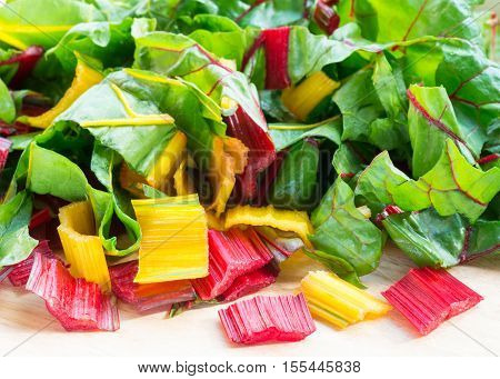 fresh organic swiss chard red yellow and green colors shot in bright window light. room for text