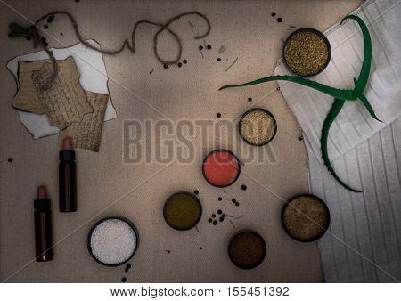 Alchemy Lab. dried herbs, salt, flasks pipettes on canvas