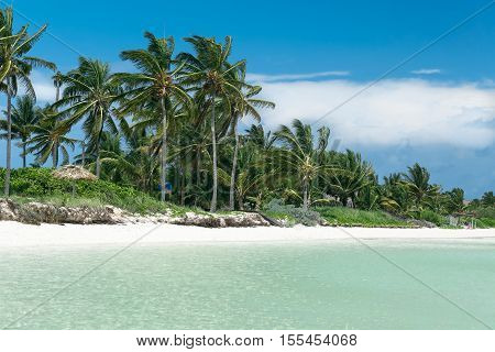 Beautiful inviting gorgeous ocean view on tropical white sandy palm beach background at Cuban island on sunny day