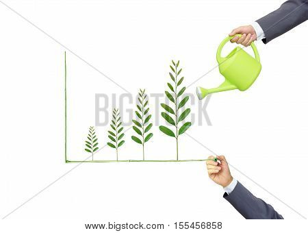 Businessmen watering and writing green tree leaves arranged as a growing graph / csr / sustainable development / corporate social responsibility