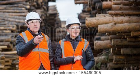 Two workers with cut trees on the backgound