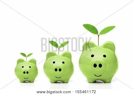 Green piggy banks with small, medium, and large size with young trees - Green saving concept