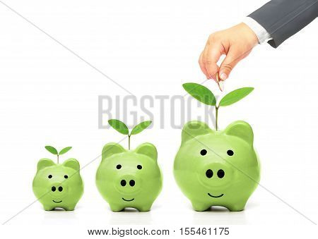 hand putting a golden coin into green piggy bank with small, medium, and large size - young generation doing green saving concept