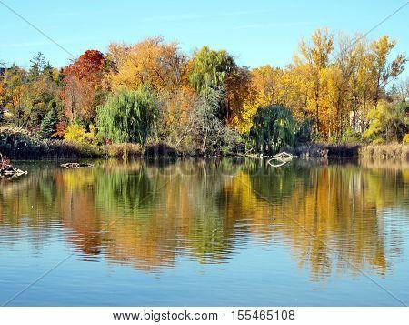 Autumn pond in Thornhill Canada November 6 2016