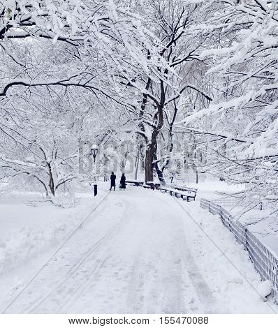 Couple out for a romantic stroll in the snow in Central Park.