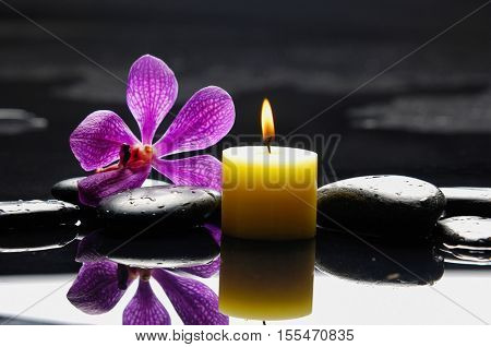 Pink orchid and candle on black stones