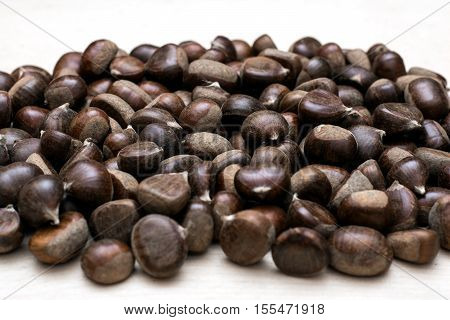 Chestnuts background. Brown Chestnuts on white background