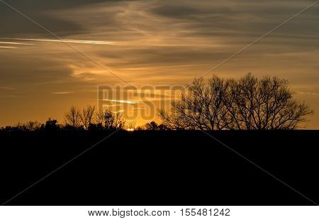 Amazing Sunset In Autumnal Landscape With Silhouette Of Shrubs
