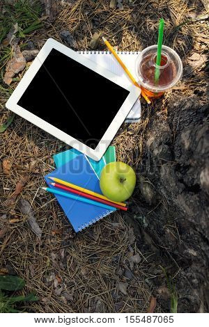 Tablet with a blank screen under the big tree in city park overhead view