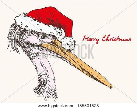 Christmas card hand drawn pelican with Santa hat