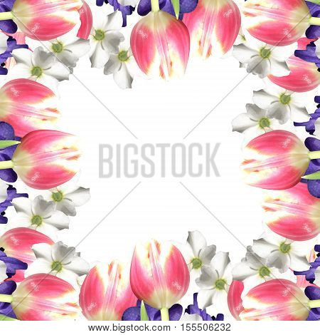Beautiful floral background with orchids, tulips and narcissus