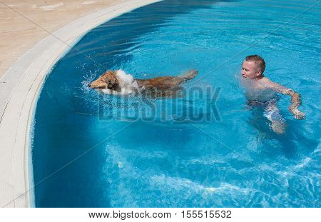 Young man teaching collie dog to swim in blue pool