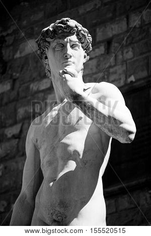Copy Of Michelangelo's David In Florence