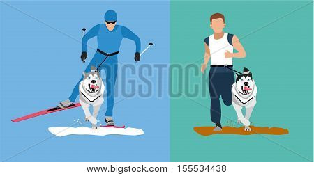 Winter cross country skiing with a dog and a summer running competition with the dog-husky. Flat cartoon illustration. Sport banner. Dog sticking his tongue runs ahead of the man. Skijoring canicross