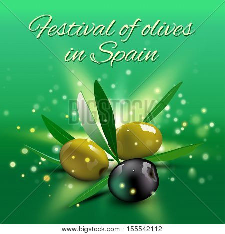 Realistic green and black olives with olive leaves on green background. Vector illustration. Olive festival in Spain, Hanukkah