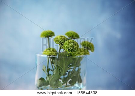 Bouquet of flowers in vase on color background