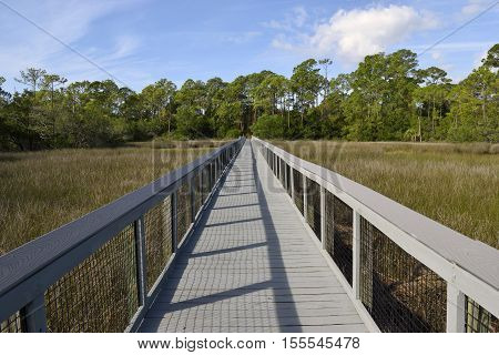 Boardwalk crossing over the marsh lands of Florida, USA