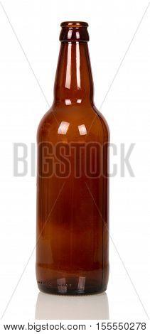 Empty beer bottle closeup on a purple background.