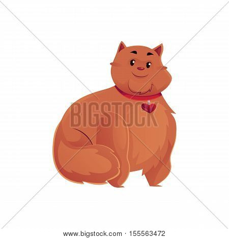Cute and funny fat, chubby, fluffy red cat, cartoon vector illustration isolated on white background. Overweight chubby cat with a fluffy tail, fatty overfed domestic pet