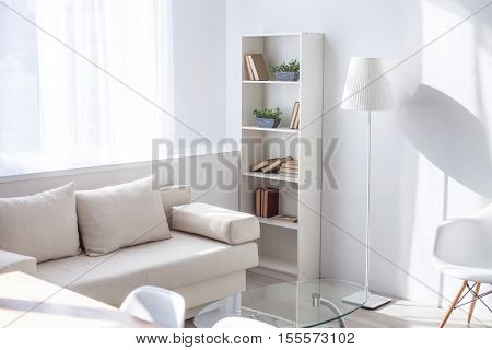 Beautiful cozy interior at home. Modern comfortable sofa near small table and bookshelf in living room