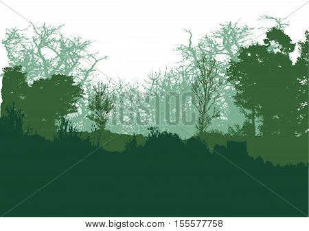 Panoramic green forest landscape with silhouettes of trees. Wild forest landscape with green and dark green trees, grass and plants