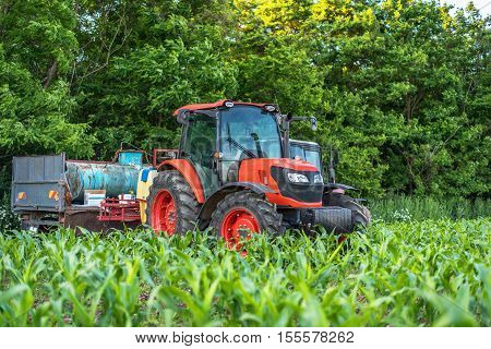 Red tractor on a green field. Green corn.