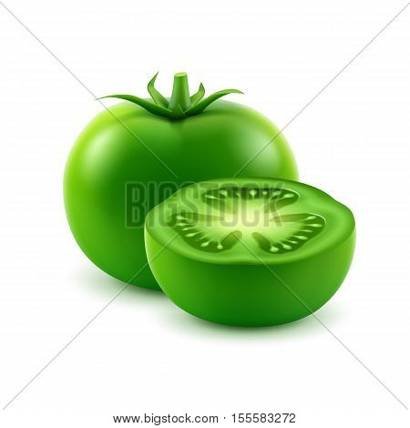 Vector Big Ripe Green Fresh Cut Tomato Close up Isolated on White Background