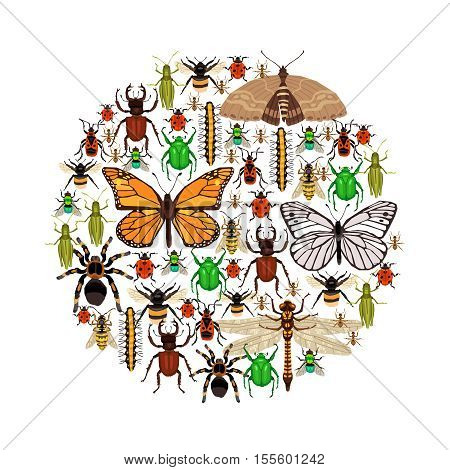Insects Round Concept. Insects Vector Illustration. Insects Decorative Symbols. Insects Flat Design. Insects Elements Collection.
