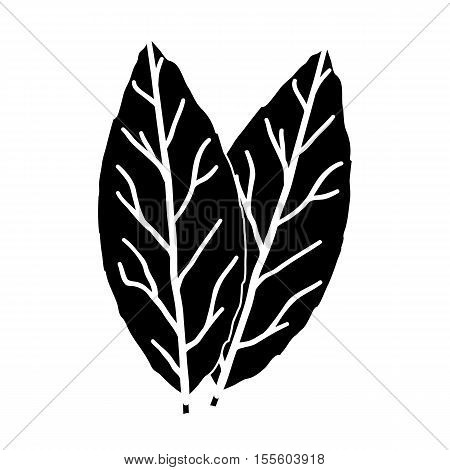 Laurus icon in black style isolated on white background. Herb an spices symbol vector illustration.
