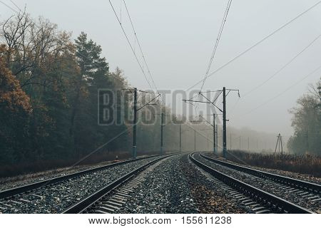 Railroad in the forest on a foggy autumn day