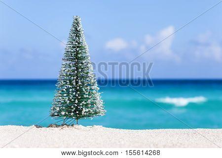 Christmas Fir Tree On Sandy Beach