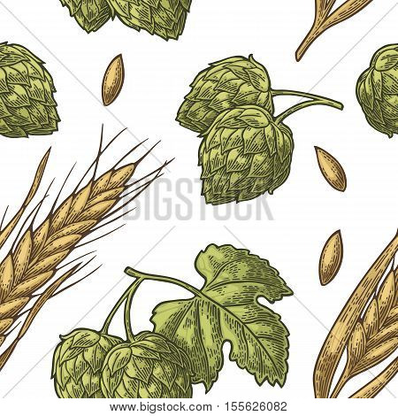 Seamless pattern from hop with leaf and Ear of barley. Isolated on white background. For poster with production process brewery beer. Vector color vintage engraved illustration. Hand drawn design