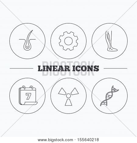 Phlebology, trichology and DNA icons. Radiology linear sign. Flat cogwheel and calendar symbols. Linear icons in circle buttons. Vector