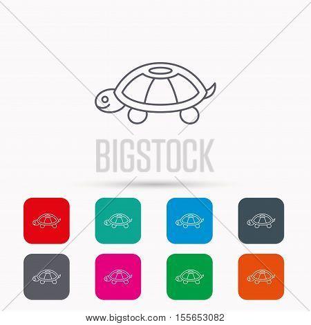 Turtle icon. Tortoise sign. Tortoiseshell symbol. Linear icons in squares on white background. Flat web symbols. Vector