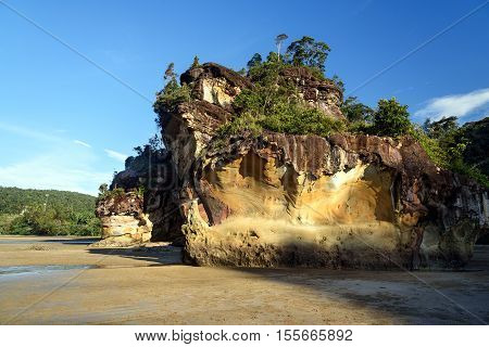 Cliff With Tree On Tropical Beach At Low Tide