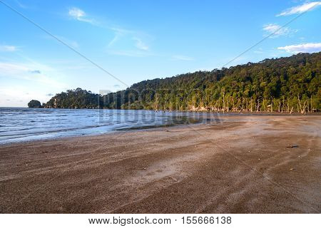 Tropical Beach At Low Tide