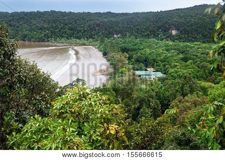 View Of Rainforest And Beach