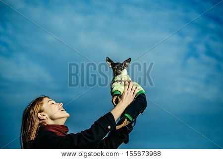 Pretty Girl Holds Toy Terrier