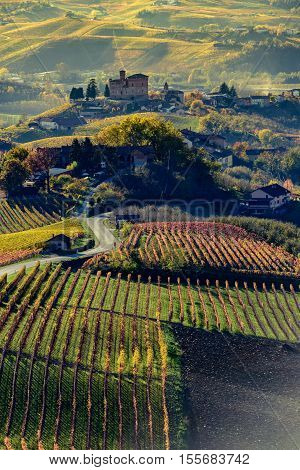 Autumn in northern italy region called langhe with colorful wineyards