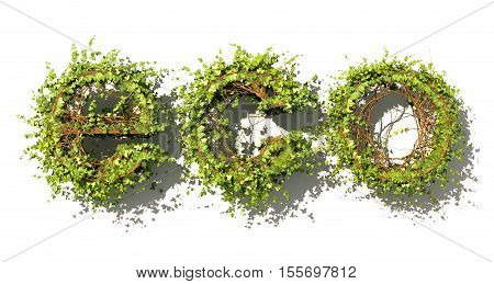 Eco concept. Eco word made of green vector leaves. Word made of ivy. 3d illustration