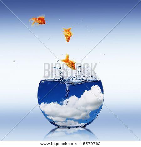 Goldfish and Aquarium. Collage. poster