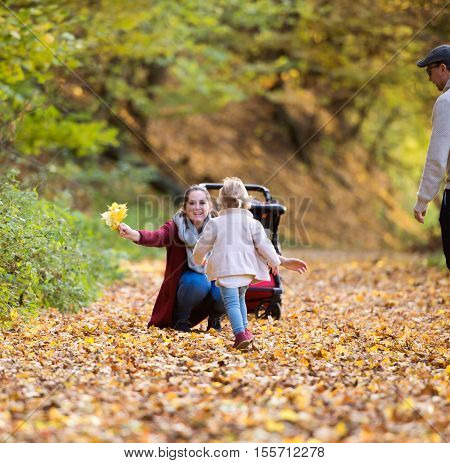 Beautiful young family on a walk in forest. Mother and father with their daughter and son in pushchair in warm clothes outside in colorful autumn nature.