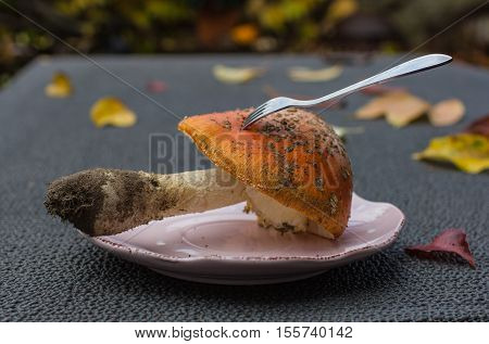 Closeup mushroom-amanita on a plate with a fork on a autumnal table