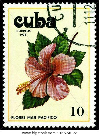 Vintage  Postage Stamp. Tues Flowers Pacifist. 4.