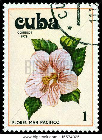Vintage  Postage Stamp. Tues Flowers Pacifist. 5.