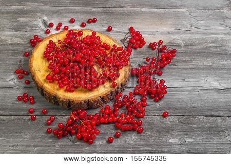 Red Viburnum berries on the round wooden board. Viburnum berries on the table gray wooden rustic background. Red Guelder-rose berries.