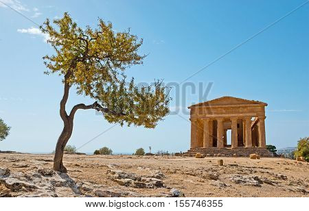 The Temple of Concordia is one of the best preserved in Valley of Temples and among all existing landmarks of Ancient Greece Agrigento Sicily Italy.
